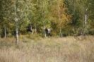 Открытие дугана в местности Бугутуй._53